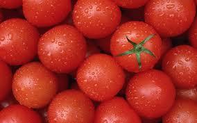 Король помидор