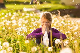 Как вылечить аллергический ринит?