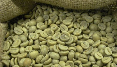 Как скинуть вес при помощи зеленого кофе