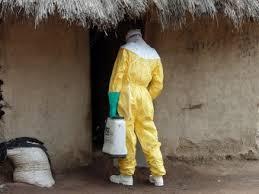 Лекарства неэффективны — вирус Эбола постоянно мутирует