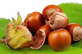 Масло лесного ореха: вкусно и полезно