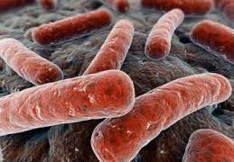 Резистивный туберкулез излечим интенсивной терапией