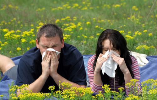 Лечение аллергии дыхательных путей