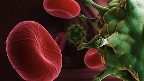 Специалисты прогнозируют вспышку эпидемии ВИЧ на постсоветском пространстве