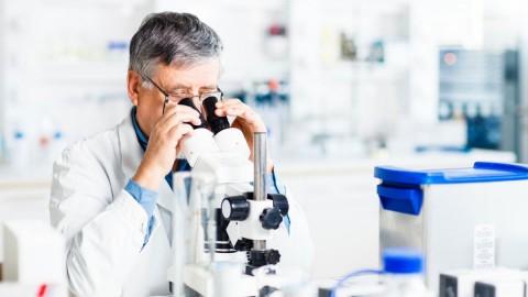 Ученые выяснили, как активировать иммунитет для борьбы с вирусами