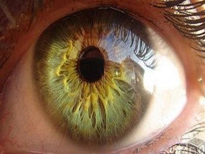 Заболевания сетчатки глаза — диагностика и способы лечения