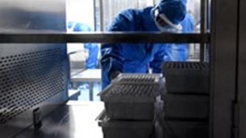 Эксперты рассказали о синтетических вакцинах