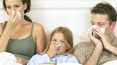 Оказалось, что вирус гриппа активно распространяется по странам мира