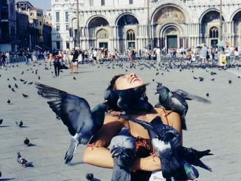 Так ли безобидны городские голуби?