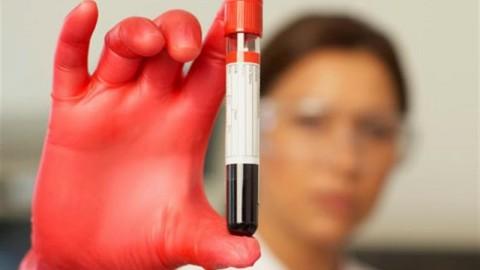 Группа крови определяет риск заболеть малярией