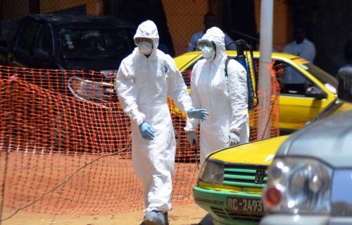 ВОЗ уличили в запоздалой реакции на распространение вируса Эболы