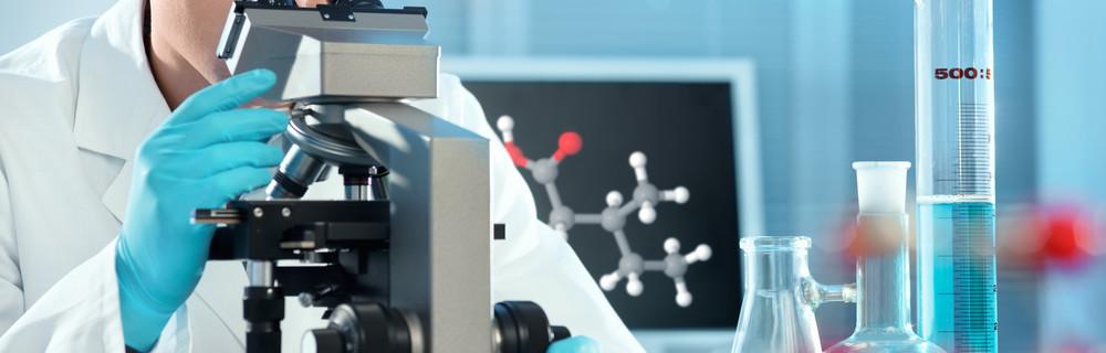 Лейкоциты в анализах крови