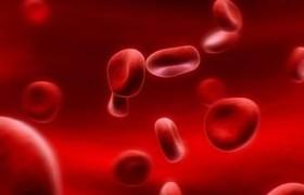 Женьшень как эффективное лечение вирусных инфекции