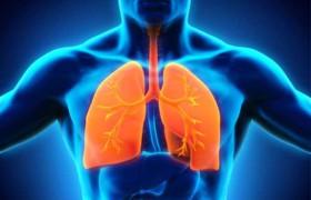 Бронхоэктатическая болезнь: причины, факторы риска