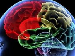 Симптомы туберкулёза мозговых оболочек