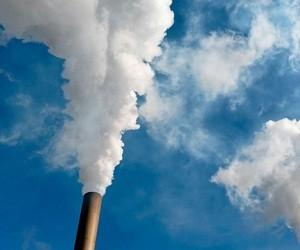 Плохая экология вызывает нарушение иммунного ответа