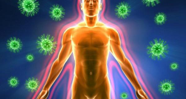 Питательные продукты усиливают распространение инфекции