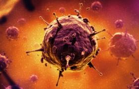 Хронические вирусные инфекции удастся победить