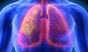 Ученые назвали факторы, вызывающие старение легких