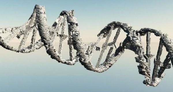 Полезные вирусы помогали человеку размножаться