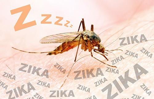 Вирус Зика может вызывать паралич дыхательных путей