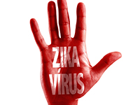 В России выявлен третий заразившийся вирусом Зика