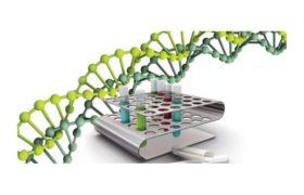 Выявление ДНК хламидии трахоматис