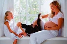 Последствия токсоплазмоза у человека, осложнения у беременных