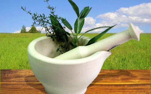 Гомеопатия при молочнице (кандидозе) — гомеопатическое лечение