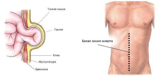 Клиники в Москве