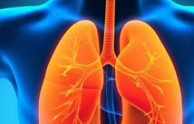 Женщины чаще мужчин страдают от болезни легких