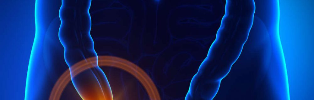 Аппендикс – важный иммунный орган