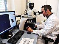 Наночастицы золота поставят крест на больничных супербактериях