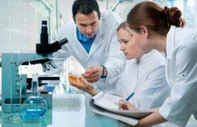 Золотистый стафилококк может провоцировать развитие системной красной волчанки