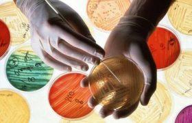 Российские ученые составили мировую карту устойчивости к антибиотикам