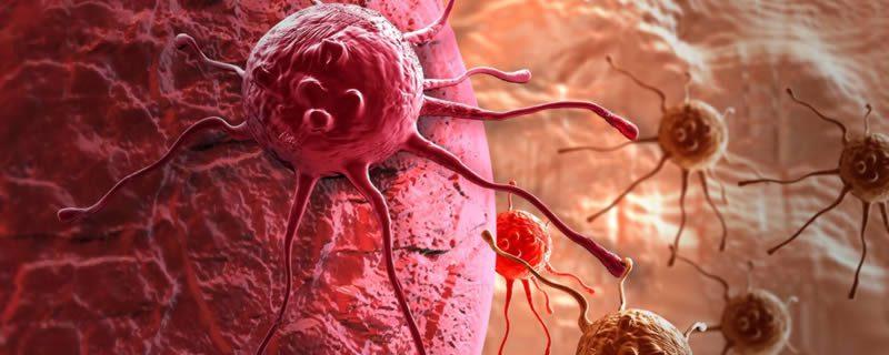 Ученые нашли способ замедлить рак