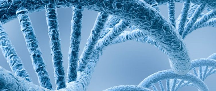 Создан каталог генетических мутаций, приводящих к аутоиммунным заболеваниям