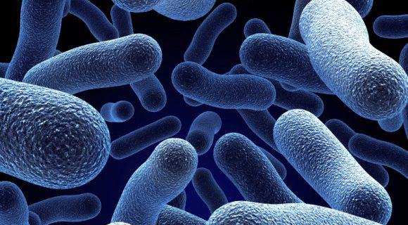 Новый антибиотик показал эффективность против устойчивых к лекарствам бактерий