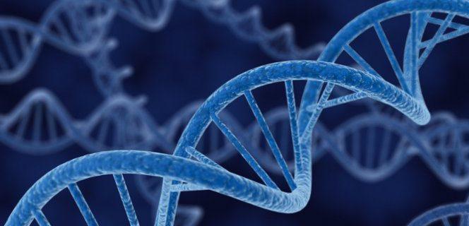 Подверженность детей простудным заболеваниям обусловлена генами