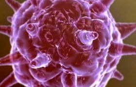 Активная половая жизнь девушек в подростковом возрасте не является основным фактором риска возникновения вируса папилломы человека