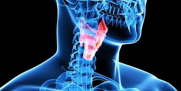 Причины, симптомы и лечение ларингита