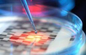 Ученые рассказали о смертельной опасности кухонных губок