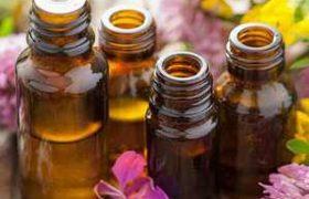 Антибиотики от природы: применяем целебные травы как лекарство