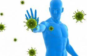 Ученые рассказали, как иммунитет помогает сжечь жир