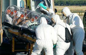 Китай предупреждает туристов об опасности заражения верблюжьим гриппом на Среднем Востоке