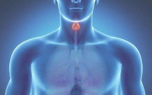 Названы признаки нарушения работы щитовидки