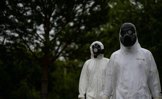 Чума на Мадагаскаре: мир вновь ждет страшная эпидемия?