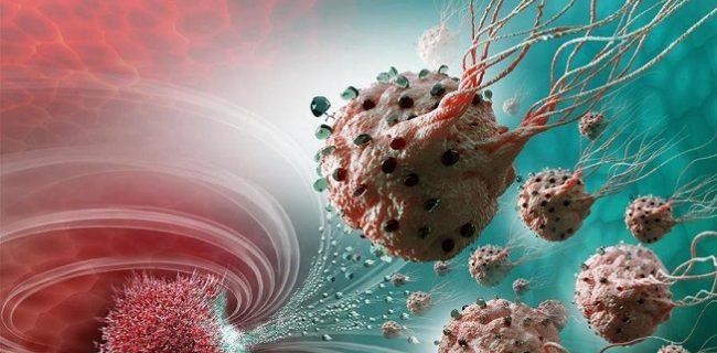 Рак будут лечить вирусом гриппа