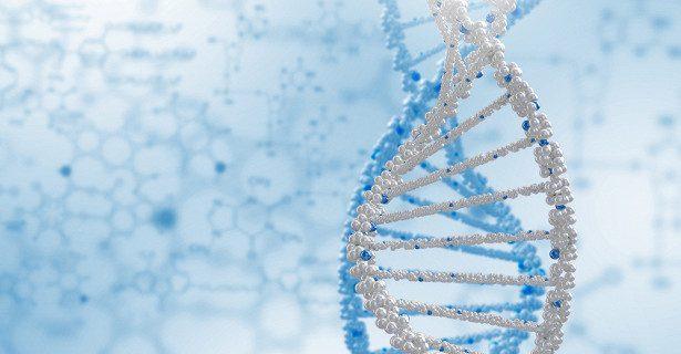 Найден ген, ответственный за развитие атеросклероза