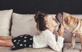Кошки вызывают астму у детей, а собаки защищают от нее